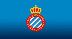 im电竞app:西班牙人一线队球员及工作人员共六人感染新